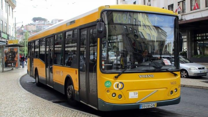 autocarro número horário festival